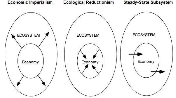 Ecology & Economy