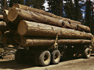 A truck with lumber