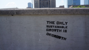 The only sustainable growth is degrowth in a steady state economy