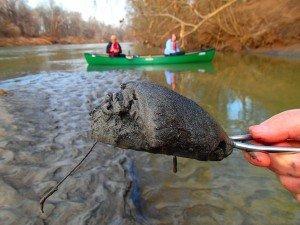 Coal ash in the Dan River