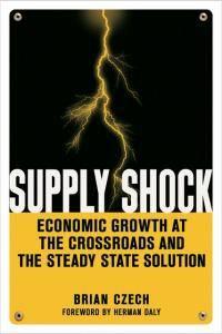 Supply Shock Book
